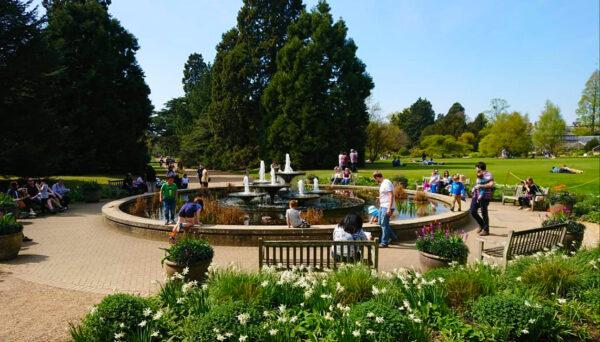 Fountain in the Cambridge Botanic Garden
